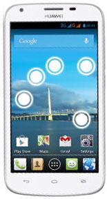 foto del cellulare Huawei Ascend Y600