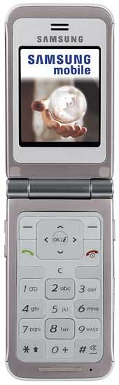 foto del cellulare Samsung E420