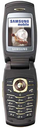 foto del cellulare Samsung E500