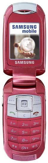 foto del cellulare Samsung E570