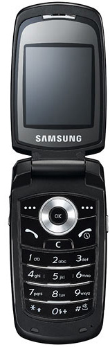 foto del cellulare Samsung E780