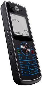foto del cellulare Motorola W160