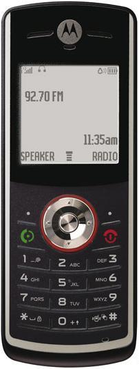 foto del cellulare Motorola W161