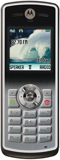 foto del cellulare Motorola W181