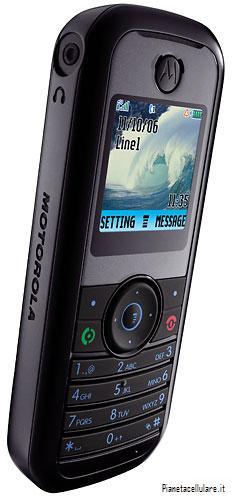 foto del cellulare Motorola W205