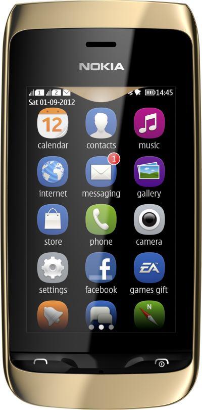 foto del cellulare Nokia Asha 308