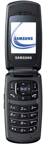 foto del cellulare Samsung X160