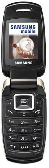 foto del cellulare Samsung X500