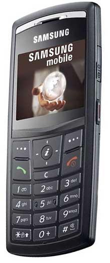 foto del cellulare Samsung X820