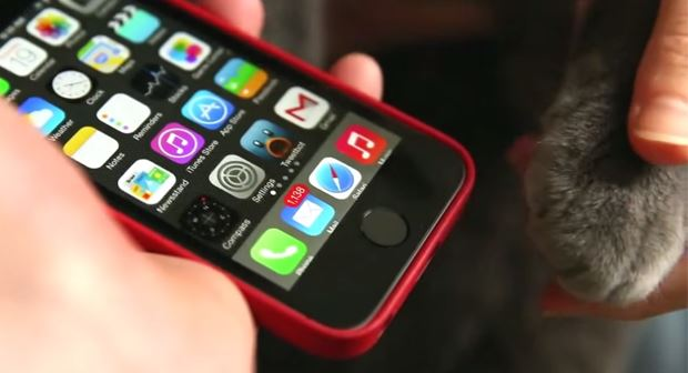 si è bloccata la schermata iphone 5s