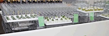HTC Desire Party Foto 3