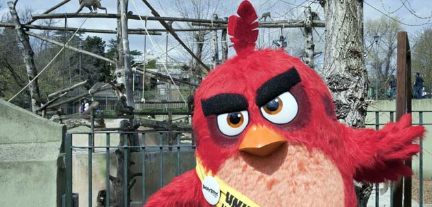 Angry Birds - RED al BioParco di Roma