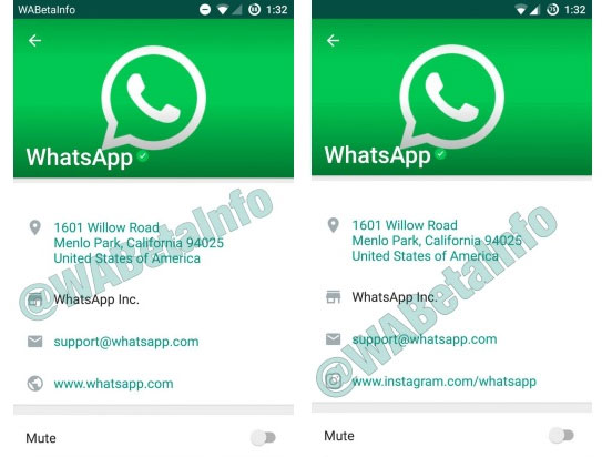 WhatsApp, icona verde per gli account Business verificati