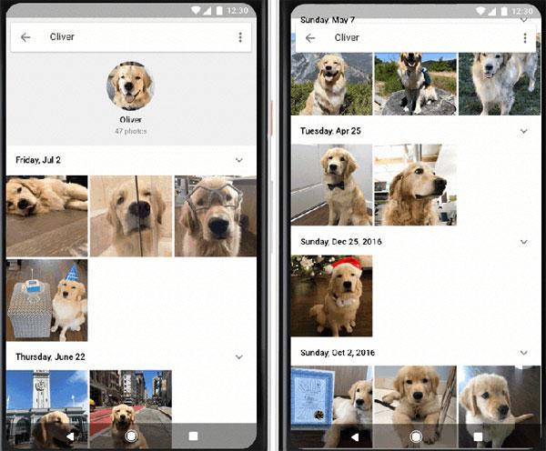Problemi con Google Foto, i backup non sono visibili