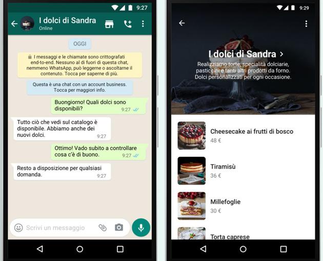 Whatsapp Lancia Tasto Per Aprire Il Catalogo Di Una Azienda Sostituisce Il Tasto Per Avviare Una Videochiamata