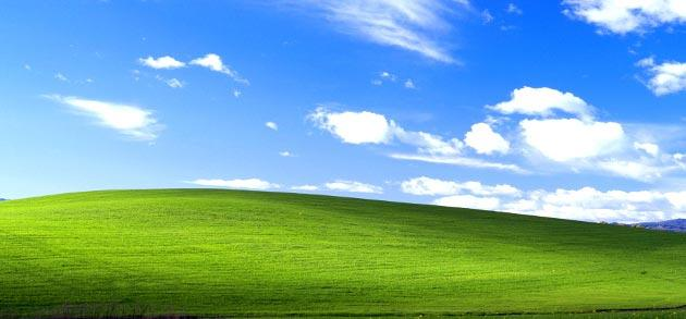 Windows XP ancora sul 26 per cento dei PC Desktop