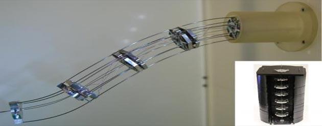 Robot flessibile che evita ostacoli, primo brevetto in Italia