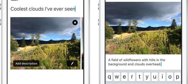 Twitter, come condividere immagini accessibili ai non vedenti