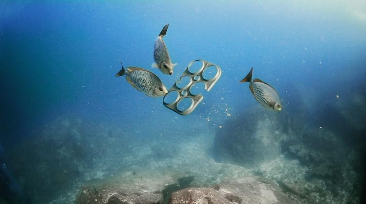 Saltwater Brewery: Ecoimballaggio commestibile per pesci e tartarughe