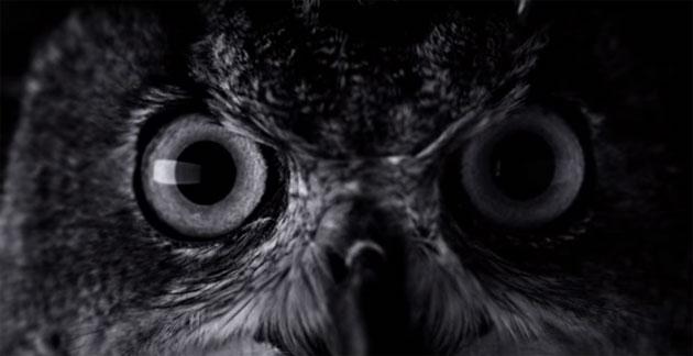 iPhone 7, un film horror il primo promo ufficiale Apple