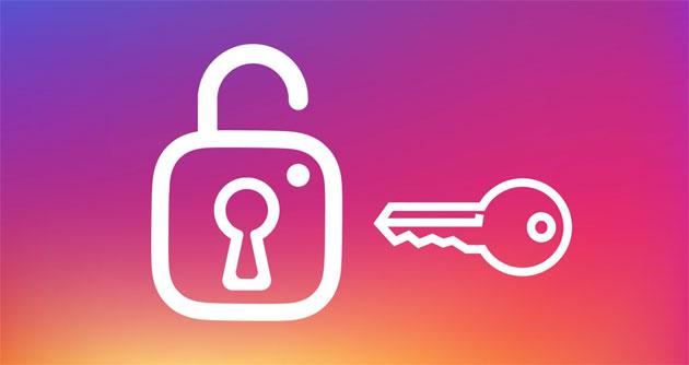 Instagram, gli utenti potranno esportare i propri dati e contenuti