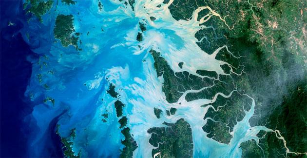 Google per la Giornata mondiale degli Oceani 2018