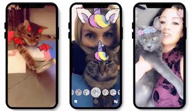 Snapchat aggiunge filtri per i gatti