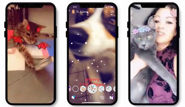 Snapchat aggiunge filtri per Cani e Gatti
