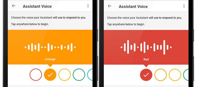 Assistente Google parla nuove voci, anche in italiano