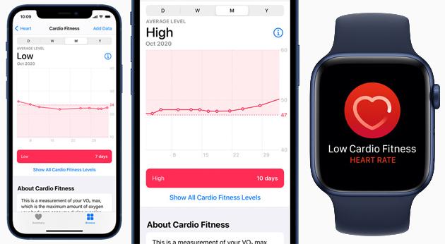 Apple Watch notifica il tono cardiovascolare, un segnale della salute generale