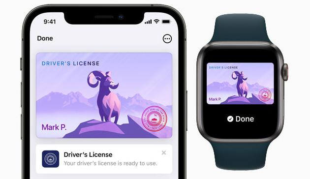 Apple annuncia i primi Stati che adotteranno patenti di guida e carte di identita' in Apple Wallet